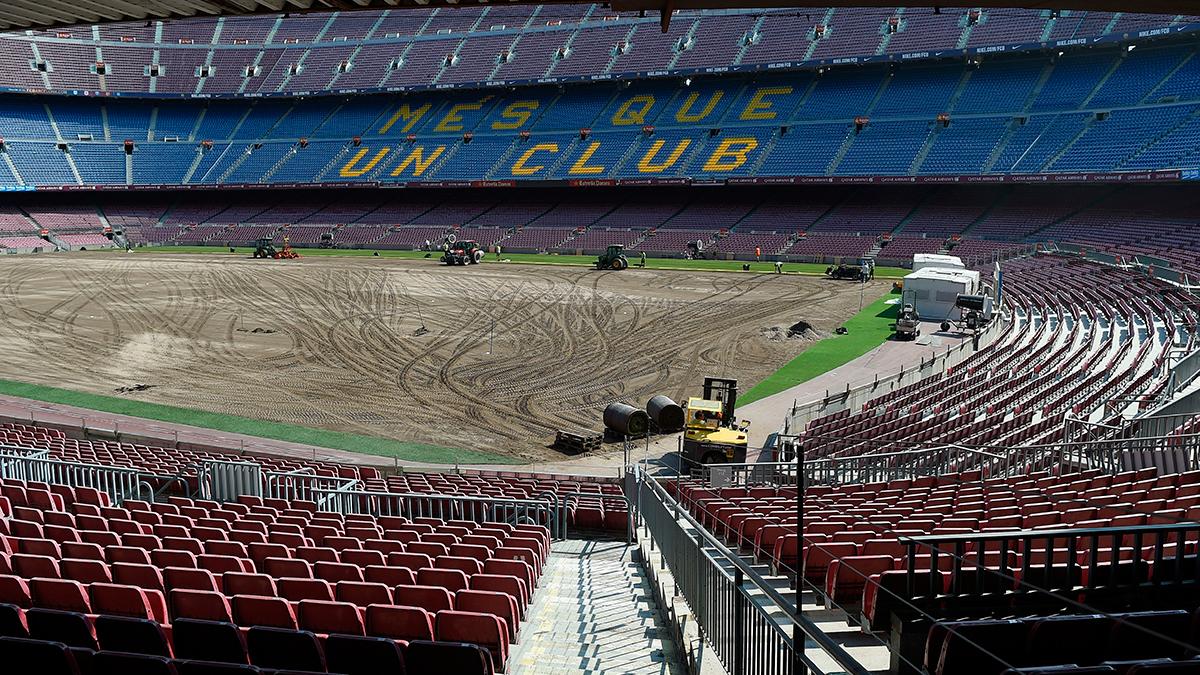 El c�sped del Camp Nou ser� de gala en el Gamper