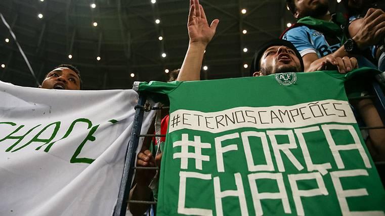 El Chapecoense sigue alucinando con la invitación del Barça