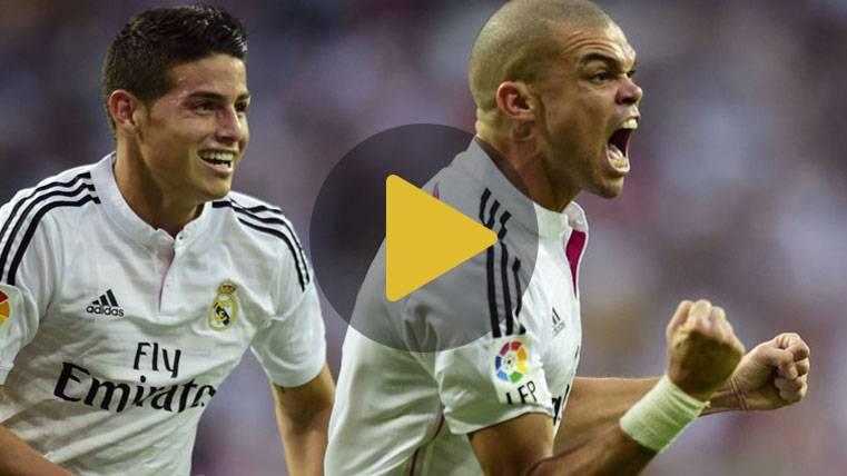 """""""¡Pepe mátalo!"""", el cántico del Real Madrid en el avión"""