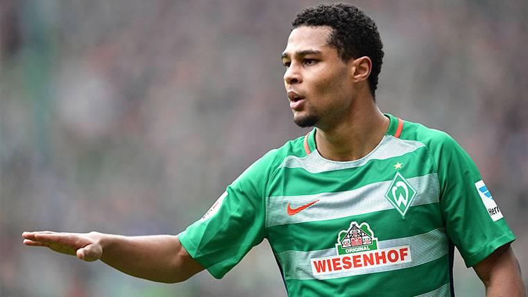 El Bayern 'pesca' a un jugador promesa por 8 millones de euros
