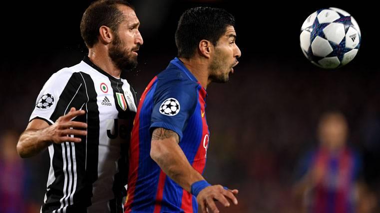Suárez y Chiellini se volvieron a encontrar: Golpe en el muslo