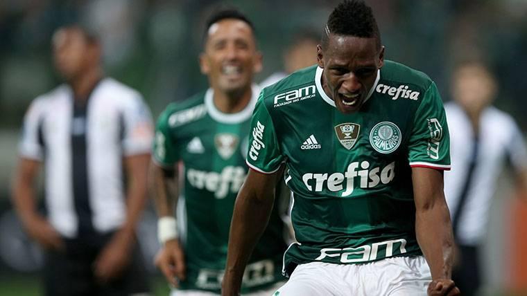 Yerry Mina, celebrando un gol marcado con el Palmeiras