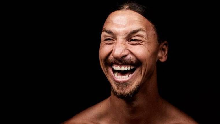 """¡Zlatan Ibrahimovic deja caer que """"si quiere"""" estará en el Mundial de Rusia!"""