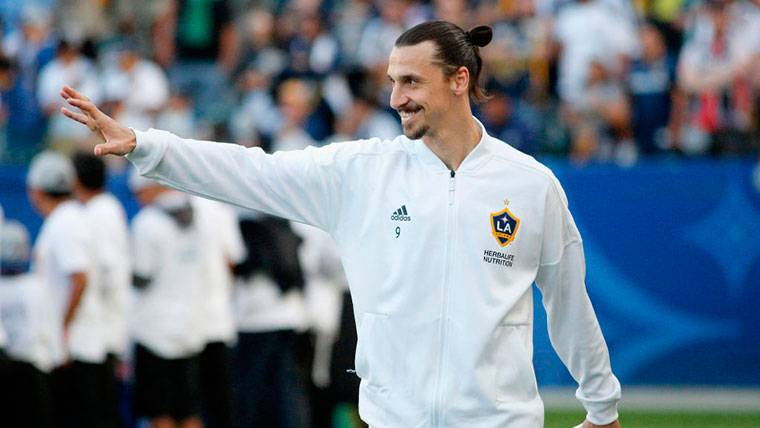 """El técnico de Suecia da calabazas a Ibrahimovic: """"No está en la lista del Mundial"""""""