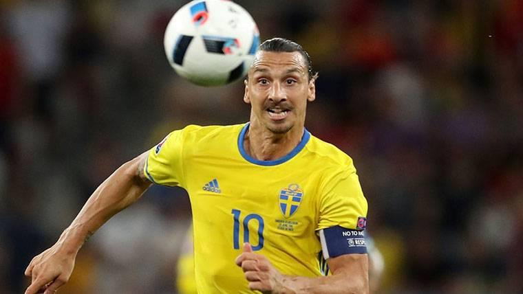 Zlatan Ibrahimovic estará en el Mundial, pero no con Suecia