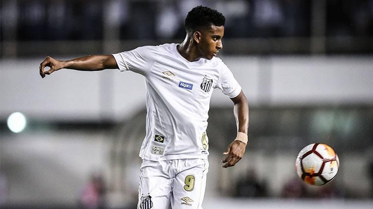 Rodrygo Goes en un partido del Santos