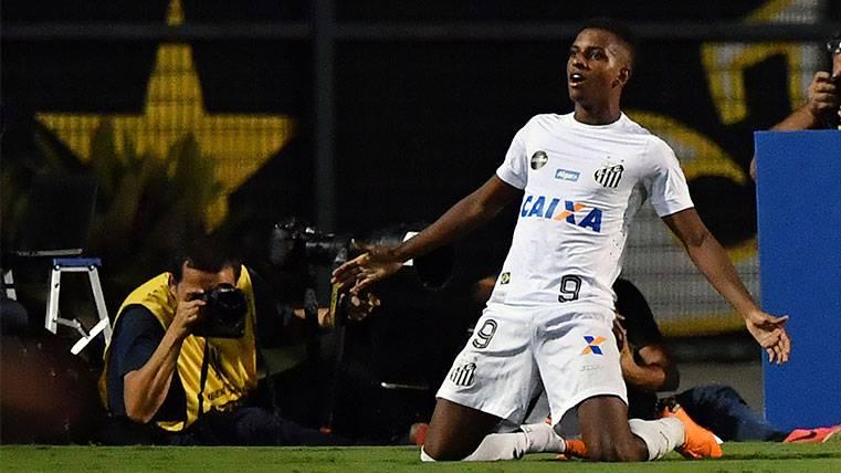 Rodrygo Goes celebra un gol con el Santos