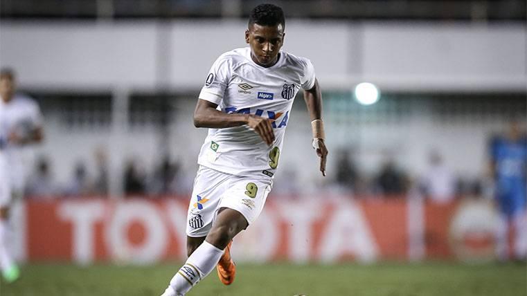Discusión en el Santos por el fichaje de Rodrygo Goes por el Real Madrid