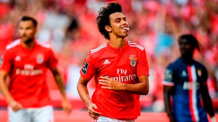 Joao Félix en un partido del Benfica
