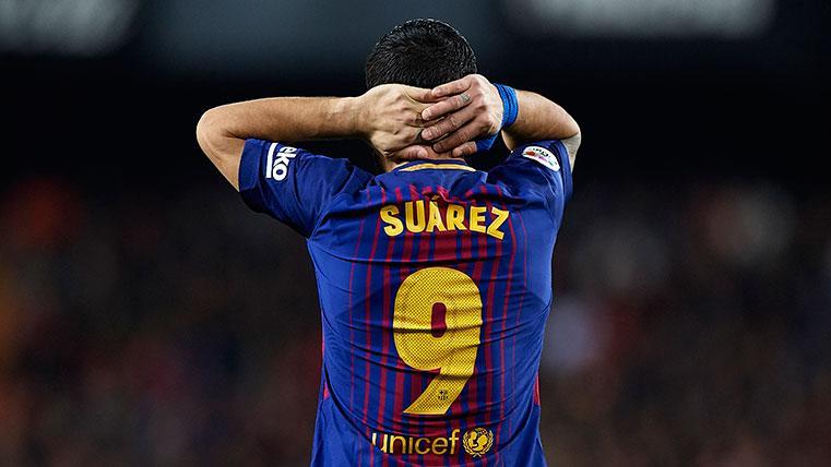 Se busca '9' compatible con Luis Suárez