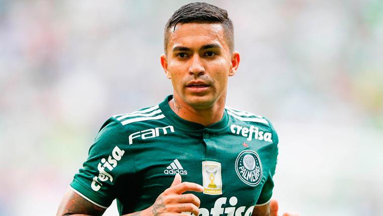 El jugador que rechaza a Barcelona y Real Madrid para jugar en el Palmeiras