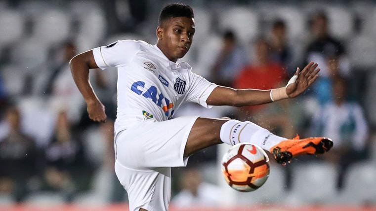 La lesión de Rodrygo que habría abierto una crisis entre el Santos y el Madrid