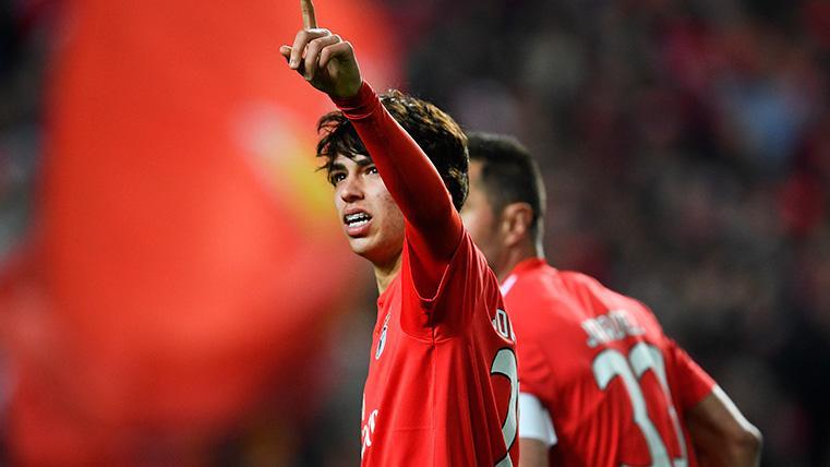 """El presidente del Benfica no está """"ni mínimamente preocupado"""" por la marcha de Joao Félix"""