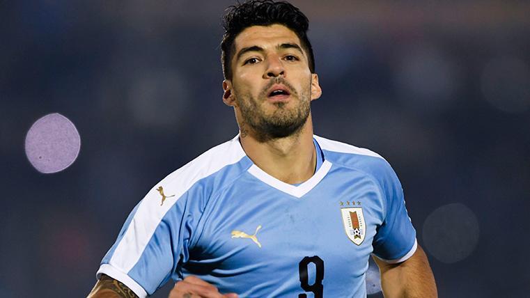 Luis Suárez, celebrando un gol marcado con la selección de Uruguay